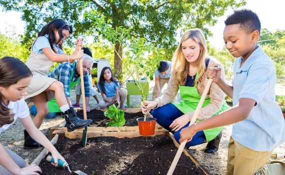 Pedagogía verde y educación emocional: cuidar de la salud mental