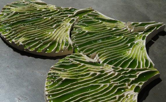 Las algas sirven como filtro para la purificación del agua contaminada