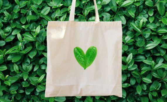 Las exigencias sostenibles del consumidor actual