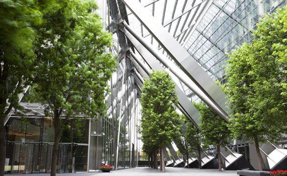 El papel de la naturaleza en la arquitectura