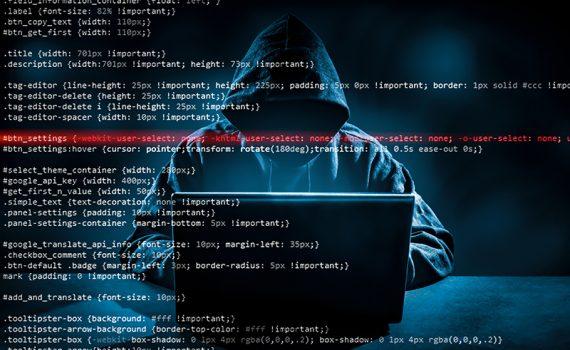 El peligro de la ciberdelincuencia durante la pandemia