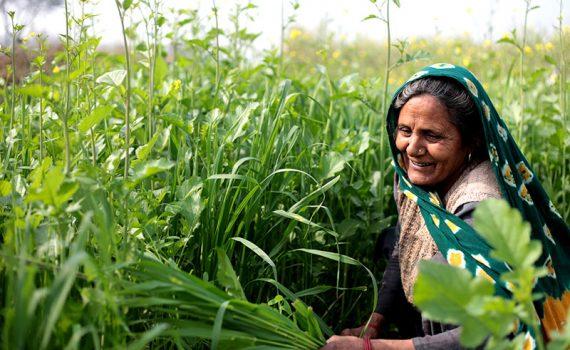 Mujeres rurales, indígenas y afrodescendientes protagonizan campaña de la FAO