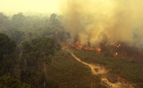 Aumentan los incendios en la parte brasileña del Amazonas