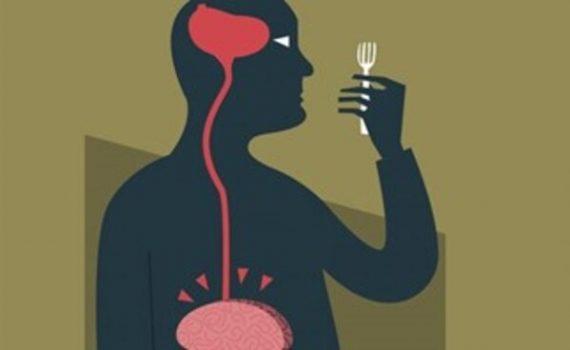 Aspectos neurológicos que nos hacen engordar