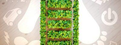 funiblog-ma-baterias-verdes