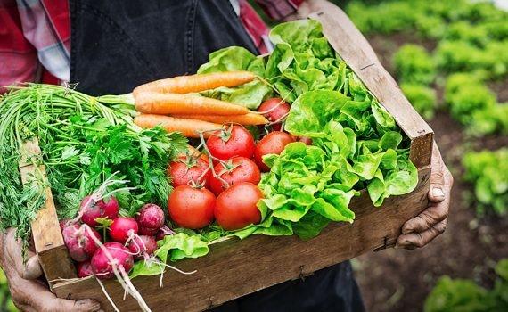 Desigualdad territorial en el consumo de alimentos nutritivos
