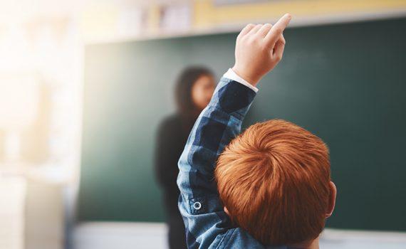 Una nueva plataforma para asegurar la educación