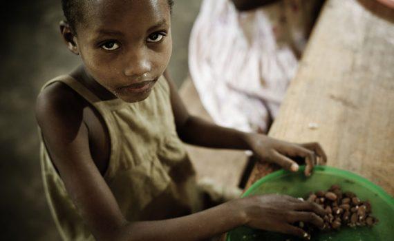 La FAO se concentra en prevenir las crisis alimentarias antes de que se produzcan